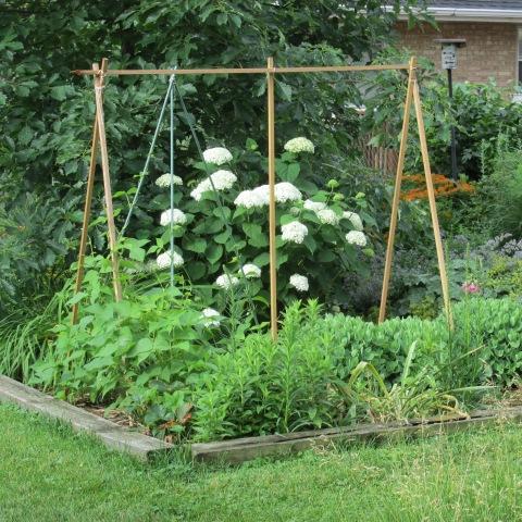 Garden 06 29 14 078