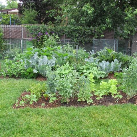 Garden 06 29 14 086