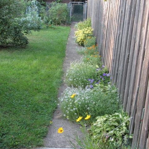 Garden 09 07 14 002