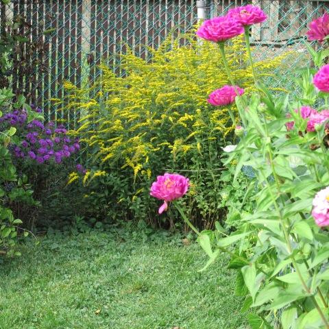 Garden 10 04 14 019