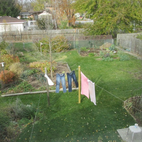 Garden 11 09 14 018