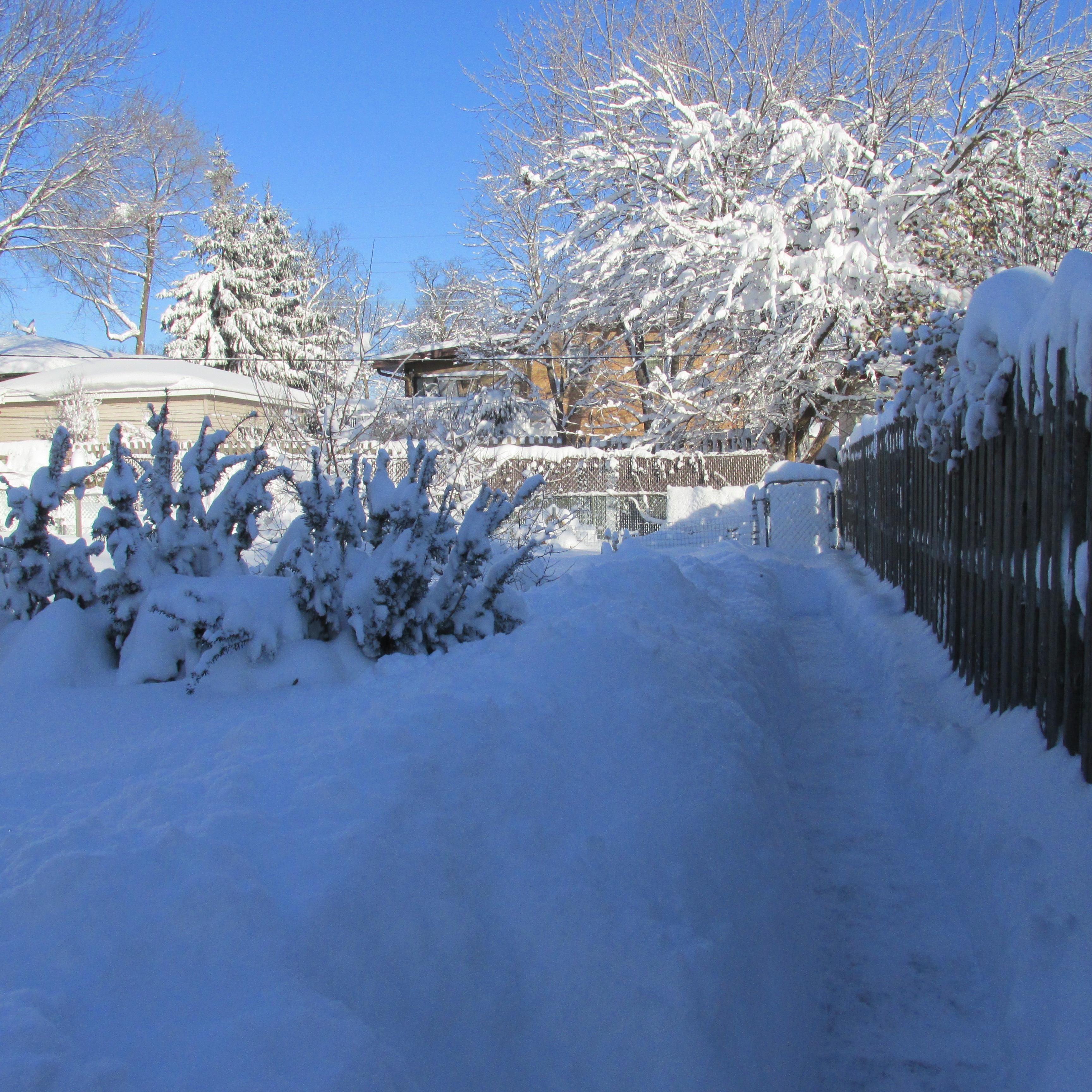 sunny snow day u2013 little backyard world