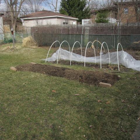 Garden 03 22 15 077