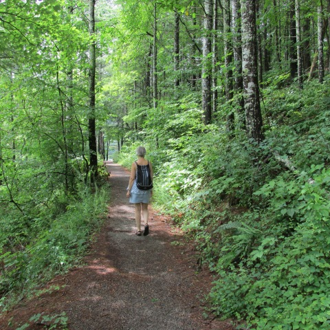 3.2 mile trail at Indian Boundary Lake