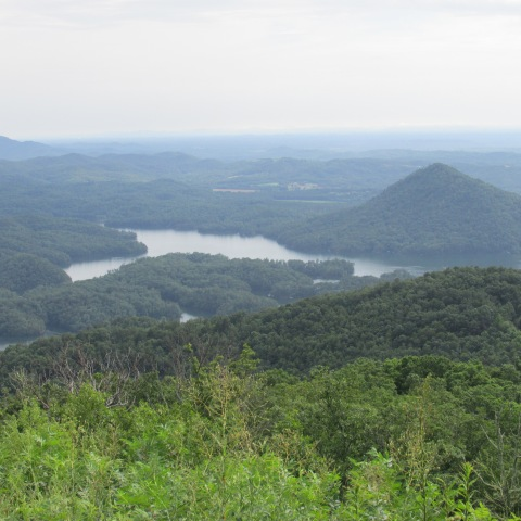 Lake Ocoee from Chilhowee Mt.