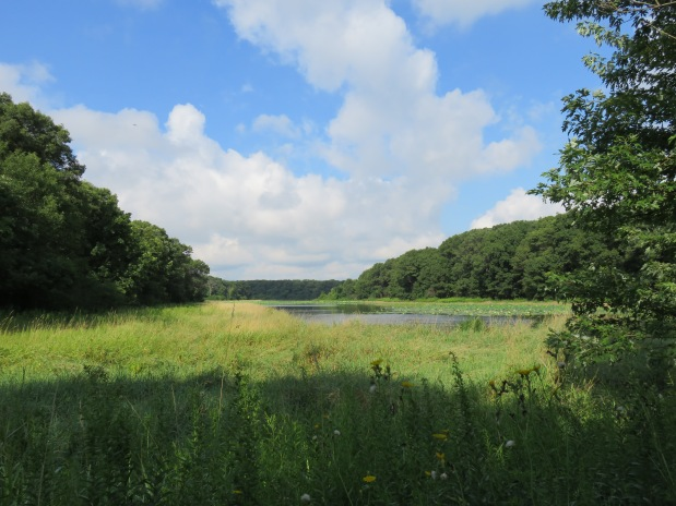 Palos Forest Preserve