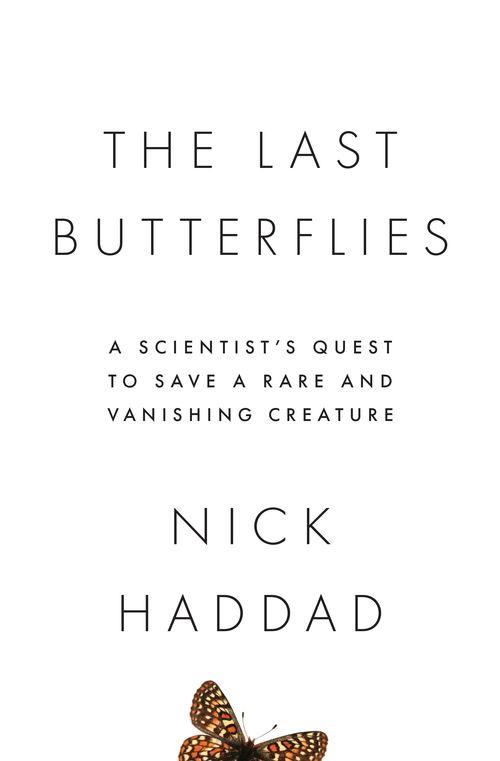 Haddad_LastButterflies